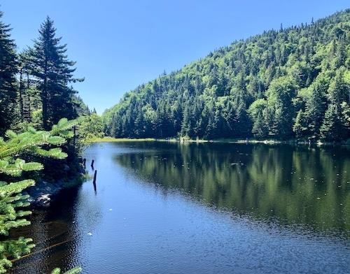 Sentier du Lac Spruce et Round Top au parc Sutton par LM Le Québec