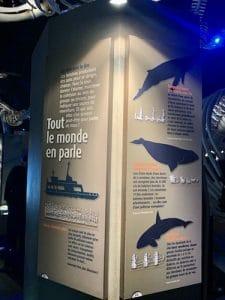 Panneau informatif au CIMM LM Le Québec