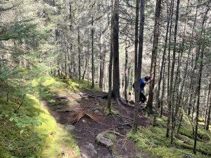 Vers le sentier des berges LM Le Québec