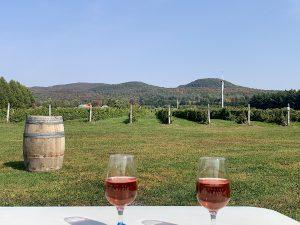 Read more about the article Dégustation de vin et cidre près de Montréal
