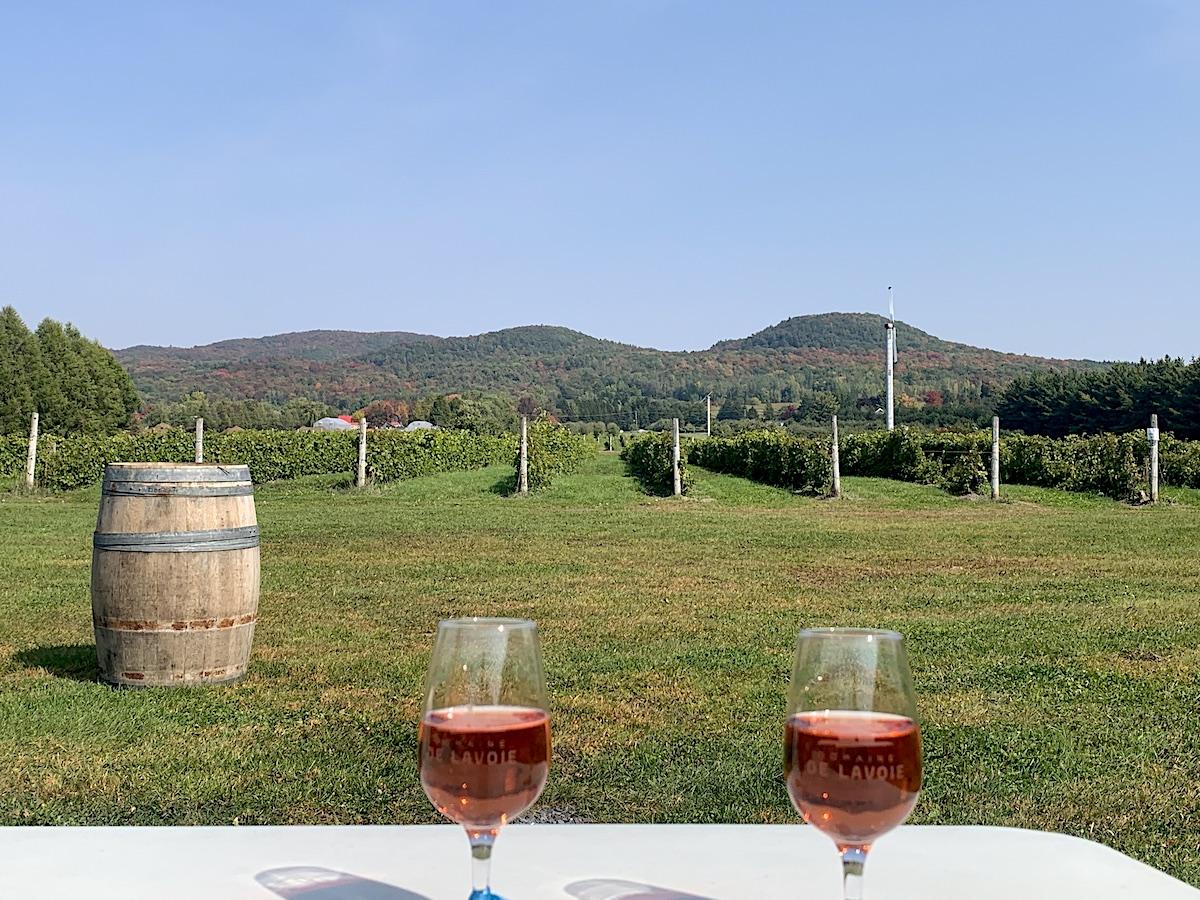 Dégustation de vin et cidre près de Montréal