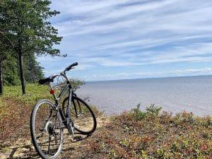 Read more about the article Parc de la Pointe-Taillon, le vélo et les bleuets !