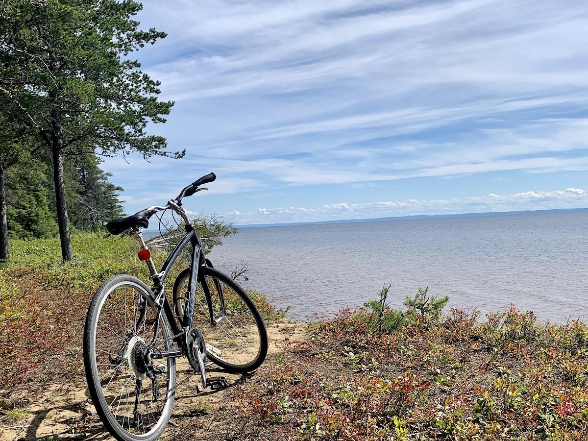 Parc de la Pointe-Taillon, le vélo et les bleuets !