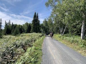 Sentier principal du parc de la Pointe Taillon LM Le Québec