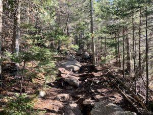 sentier jaune du mont pinacle LM Le Québec