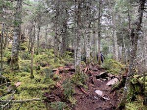 Sentier Bleu des Sentiers du Morne LM Le Québec