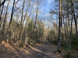 Sentier boise du parc des Chutes Dorwin LM Le Québec