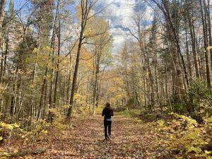 Sentier du Massif du Winslow au parc national de Frontenac vu par LM Le Québec