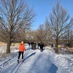 Le parc national des îles-de-Boucherville en hiver