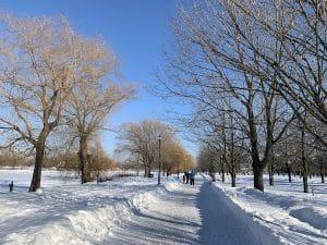 Sentier du parc Rene Levesque Lachine Montreal LM Le Québec