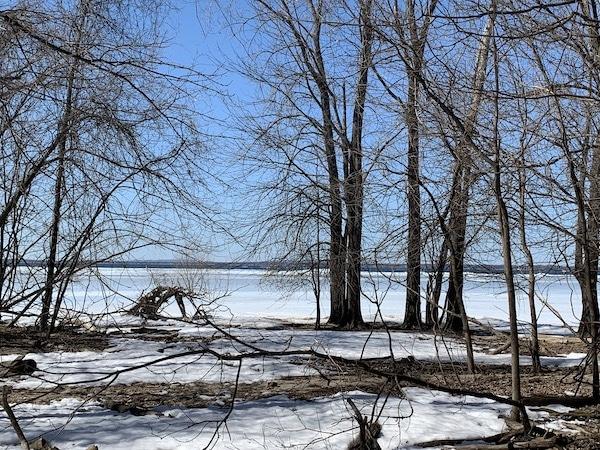 Vue sur le Lac Saint Louis du refuge faunique LM Le Québec