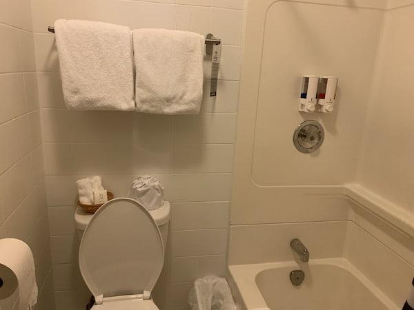 Hotel Mont Tremblant salle de bains LM Le Québec