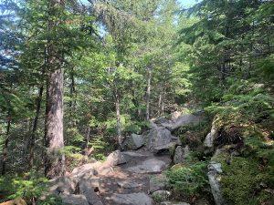 Sentier escarpe LArcrople des Draveurs LM Le Québec